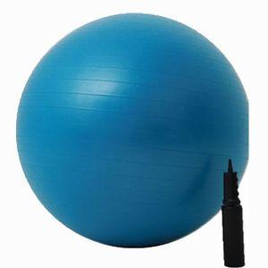 Bola-Azul-65cm