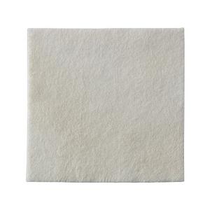 Curativo-de-Espuma-Biatain-Alginato-10x10cm-Coloplast